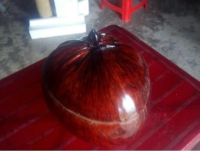 Vỏ bình trà bằng trái dừa0