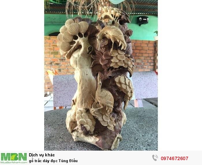 gỗ trắc dây đục Tùng Điểu4