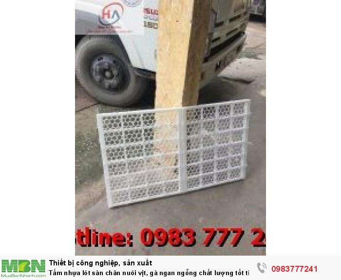 Sàn Vịt Thông Minh - Tấm nhựa lót sàn chuồng vịt (gà) ngan ngỗng5
