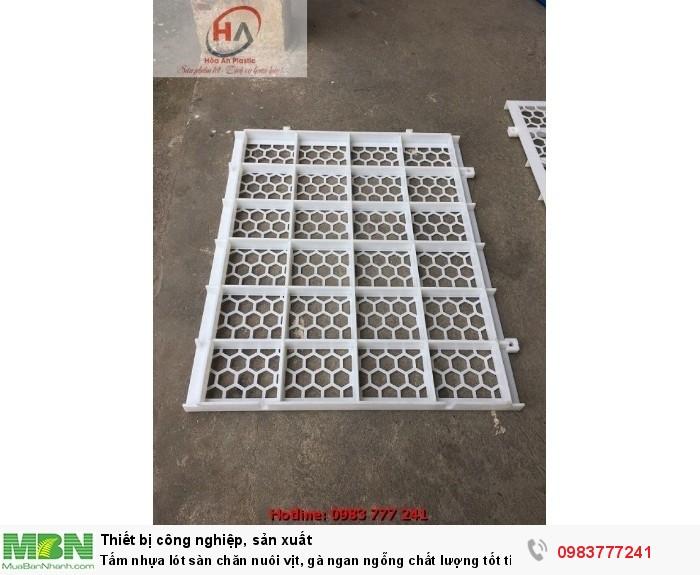 Sàn Vịt Thông Minh - Tấm nhựa lót sàn chuồng vịt (gà) ngan ngỗng7
