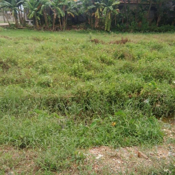 Bán 2 lô đất giá rẻ tại kiệt 73 Nguyễn Hữu Cảnh, An Tây – TP Huế