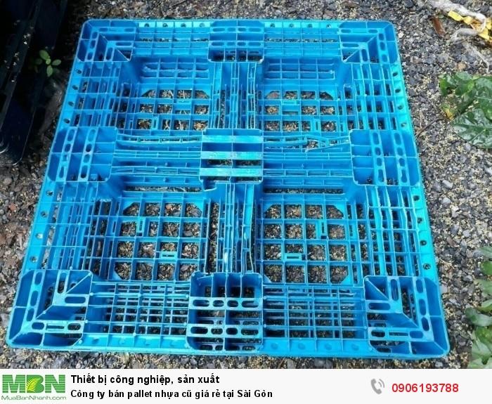 Công ty bán pallet nhựa cũ giá rẻ tại Sài Gòn