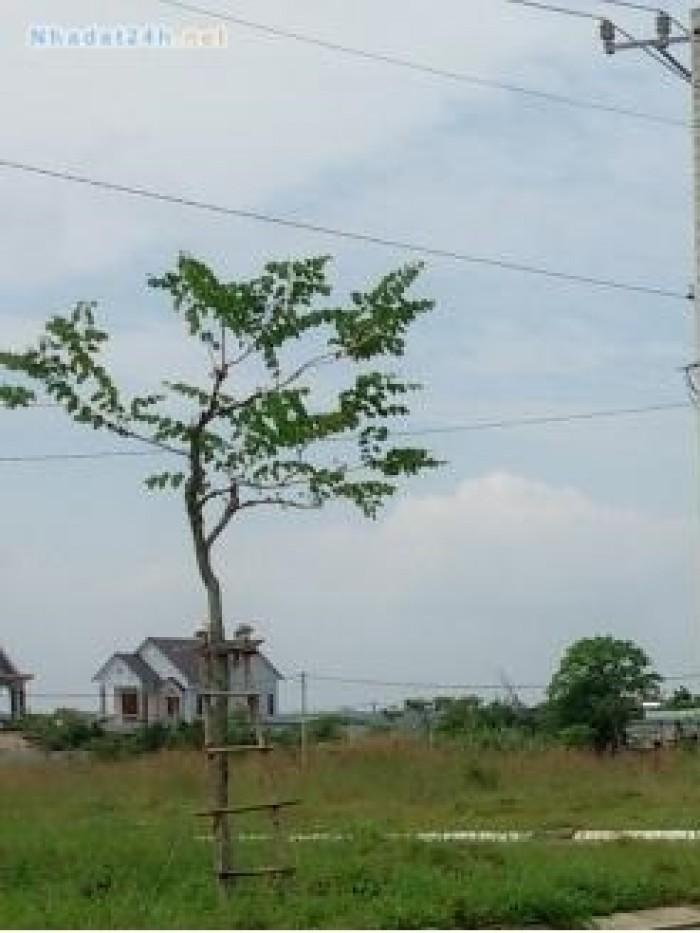Bán gấp 1 lô đất chính chủ đường số 29A, Bình Tân