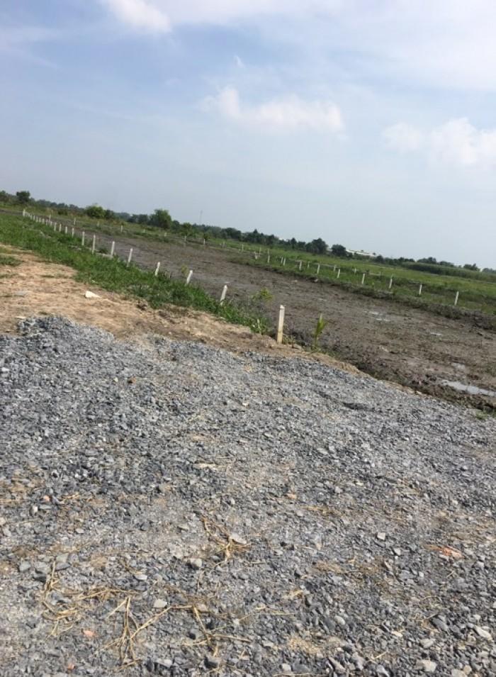 Bán đất củ chi giá rẻ MT Rạch đường 212 xã Tân Thạnh Đông ,dt,2253m2,SHR