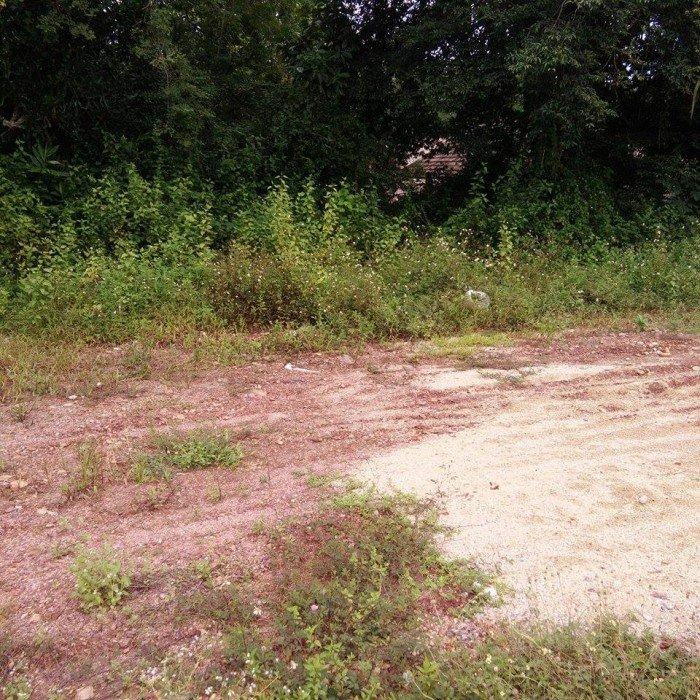 Cần bán gấp lô đất nở hậu tại KQH Bàu Vá 1 đi vào 300m