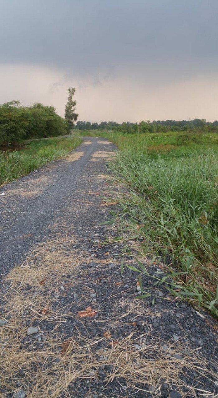 Bán đất củ chi gần chợ sáng tân thạnh Đông ,dt,2800m2 giá 600 nghìn/1m2,SHR