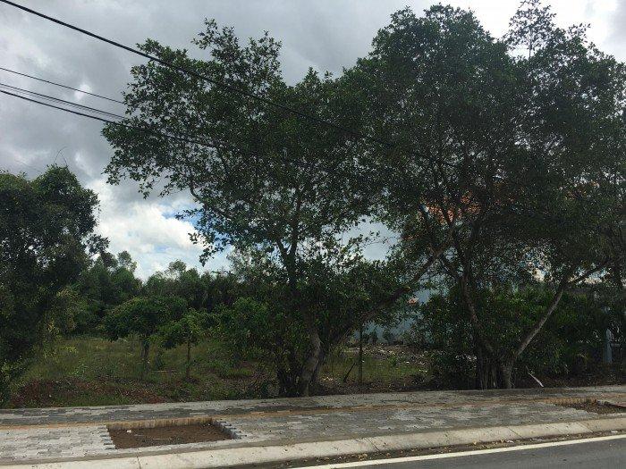 Bán đất đường T12, Tân Quý Tây 2400m2,2 mặt tiền đường