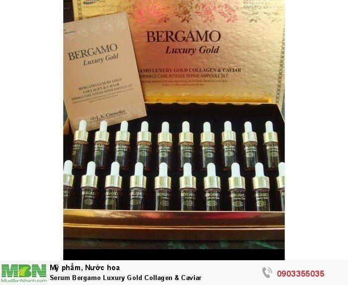 Serum Bergamo Luxury Gold Collagen & Caviar2