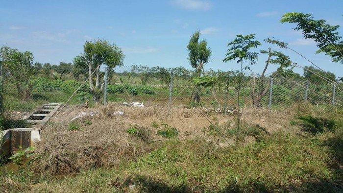 Bán đất vườn củ chi đường láng the xã Tân Thạnh Tây dt,6000m2 ,SHR ,chính chủ