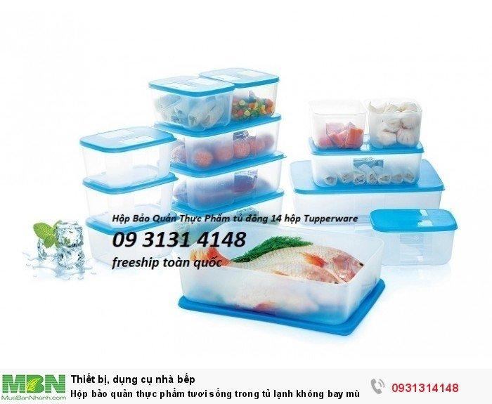 Hộp  bảo quản thực phẩm tươi sống  ------Hotline: 0931 314 148 Tupperware Nguyễn Cư Trinh  192 Nguyễn Cư Trinh, Phường Nguyễn Cư Trinh, Quận 1, Tp.HCM0
