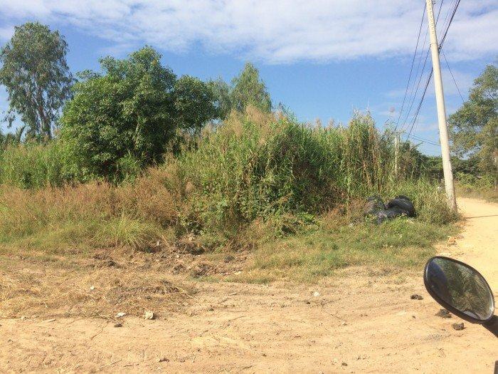 Bán đất đầu tư kho xưởng  679m2 ngay Phạm Hùng Bình Hưng Bình Chánh