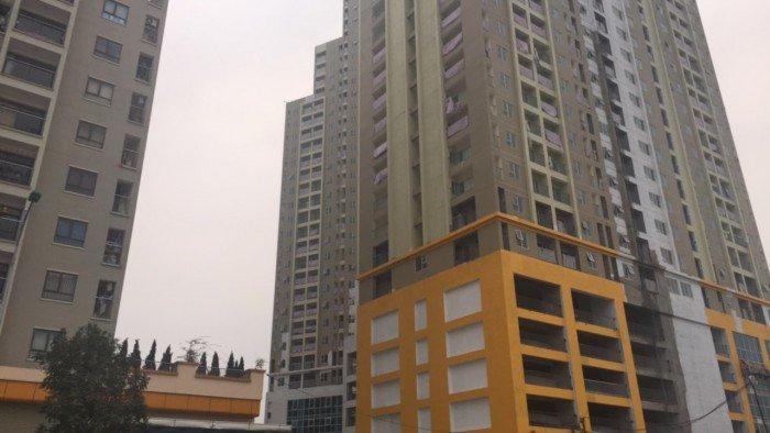 Cắt lỗ căn 66m chung cư The Golden An Khánh