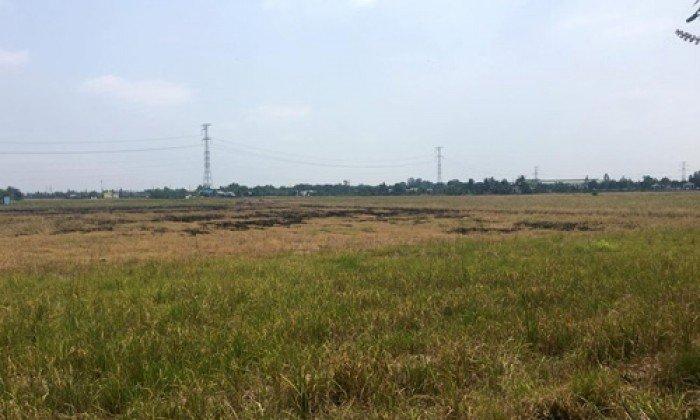 Cho thuê đất cụm công nghiệp Tam Điệp tỉnh Ninh Bình 10.000m2