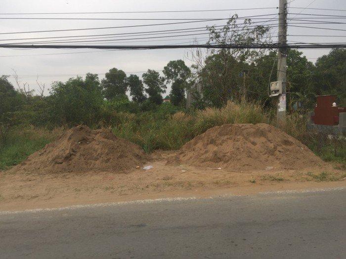 Thiếu vốn làm ăn nên cần bán gấp lô đất 250m2 đất Bình Chánh.