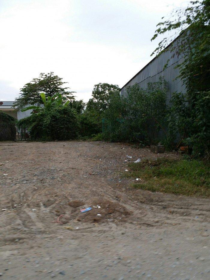 Ngôi Nhà Vườn, 1013m2, Bờ Rào Kiên Cố, Tân Liễu, Bình Chánh