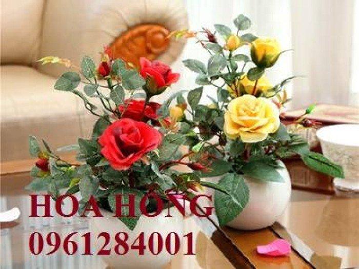 Hoa chơi tết, hoa phát lộc, hoa phát tài. địa chỉ cung cấp hoa chơi tết số lượng lớn uy tín chất lượng8