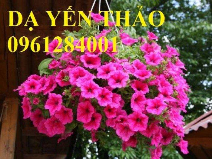 Hoa chơi tết, hoa phát lộc, hoa phát tài. địa chỉ cung cấp hoa chơi tết số lượng lớn uy tín chất lượng11