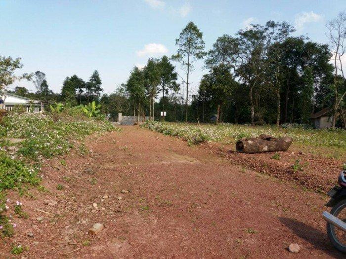 Bán nhà đất giá rẻ bề ngang 8m 100m2 Thành Phố Huế