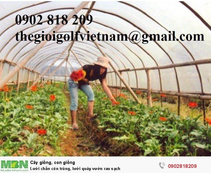 Lưới chắn côn trùng, lưới quây vườn rau sạch1