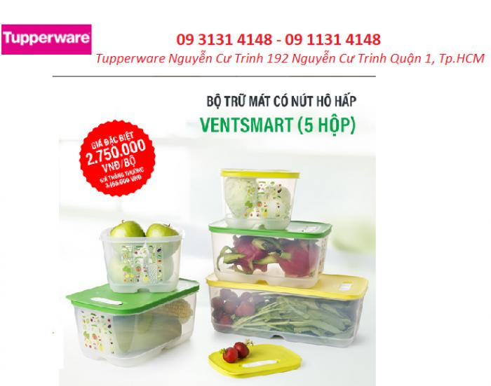 Hộp bảo quản rau củ quả trái cây Tupperware trong ngăn mát tủ lạnh
