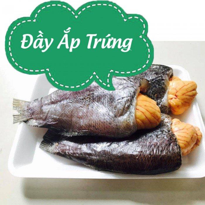 Khô cá sặc trứng 1 nắng được nhà làm rất ngon, con khô cá sặc sau khi được phơi dẻo qua một nắng được đem vào nhà và cho trứng vào rất là hấp dẫn. Cá rất là nhiều trứng đặc biệt là trong thời kỳ đẻ trứng của cá. Thịt cá ăn ngọt và thơm ngon.