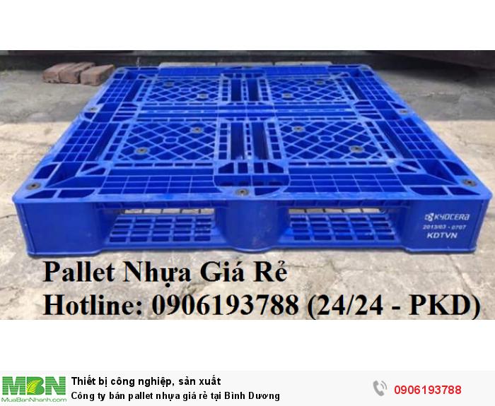 Công ty bán pallet nhựa giá rẻ tại Bình Dương