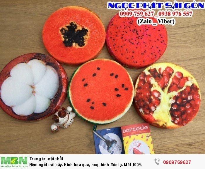 Nệm ngồi trái cây. Đệm ngồi hình hoa quả, nệm lót ngồi hoạt hình.13