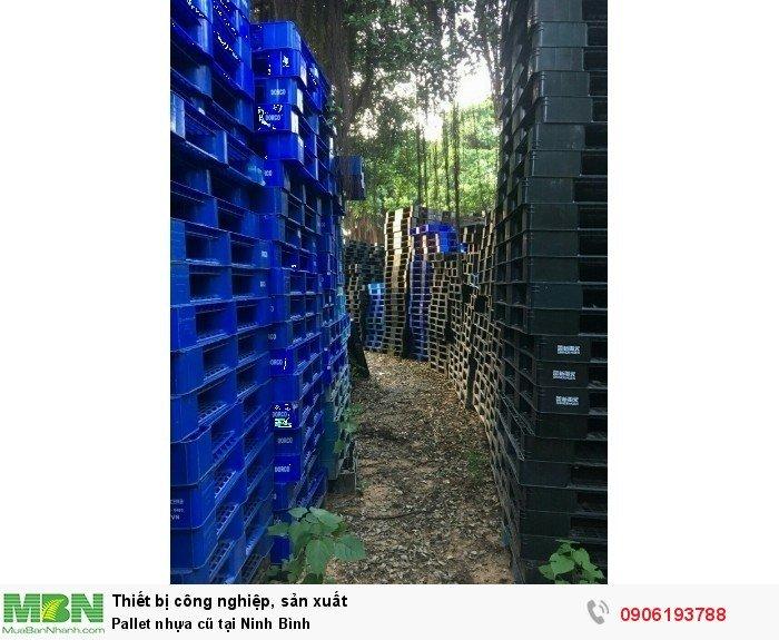 Pallet nhựa cũ tại Ninh Bình, miễn phí vận chuyển số lượng lớn - Liên hệ: 0906193788 (24/24 - Phòng Kinh Doanh)