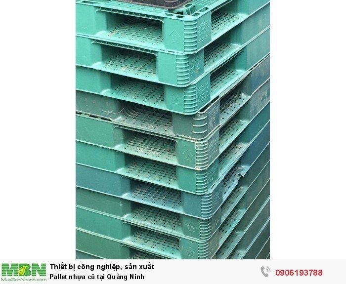 Pallet nhựa cũ tại Quảng Ninh