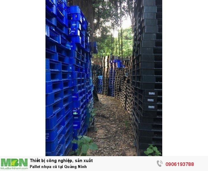 Pallet nhựa cũ tại Quảng Ninh, miễn phí vận chuyển số lượng lớn - Liên hệ: 0906193788 (24/24 - Phòng Kinh Doanh)