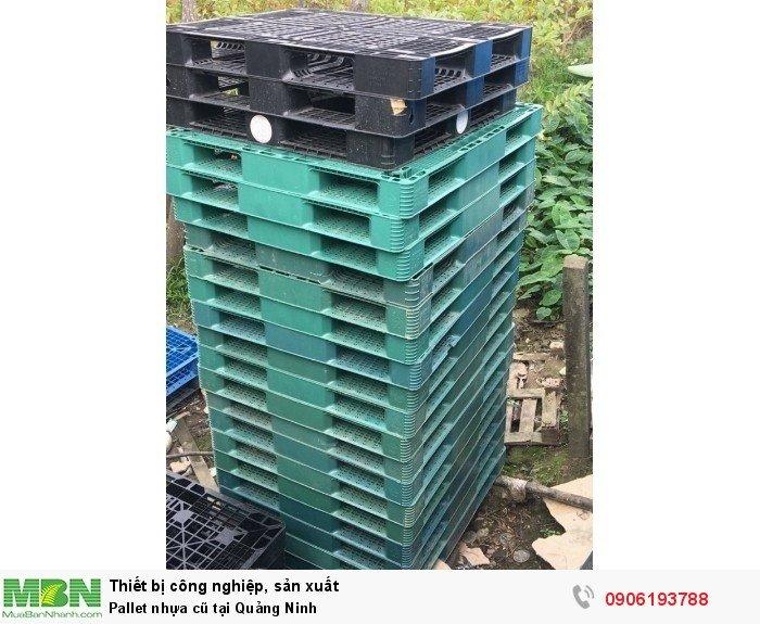 Pallet nhựa cũ tại Quảng Ninh - Liên hệ: 0906193788 (24/24 - Phòng Kinh Doanh)