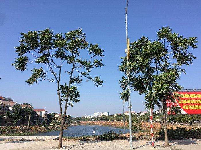Bán đất nền tại dự án KĐT Trằm đá Việt Trì