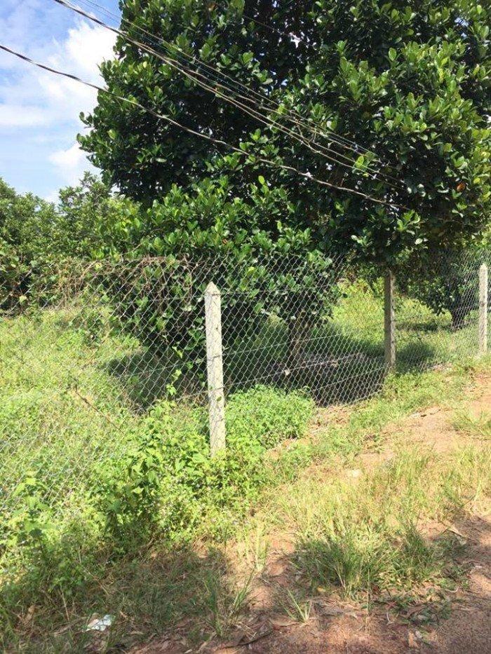Bán đất vườn Củ Chi giá rẻ ,MT Trung An ,dt ,4000m2 ,SHR