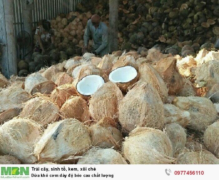 Dừa khô cơm dày độ béo cau chất lượng0