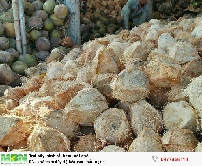 Dừa khô cơm dày độ béo cau chất lượng1