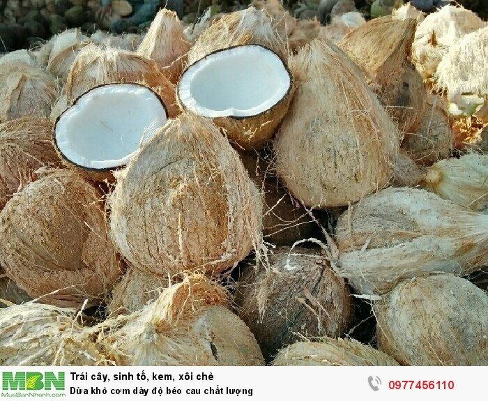 Dừa khô cơm dày độ béo cau chất lượng2