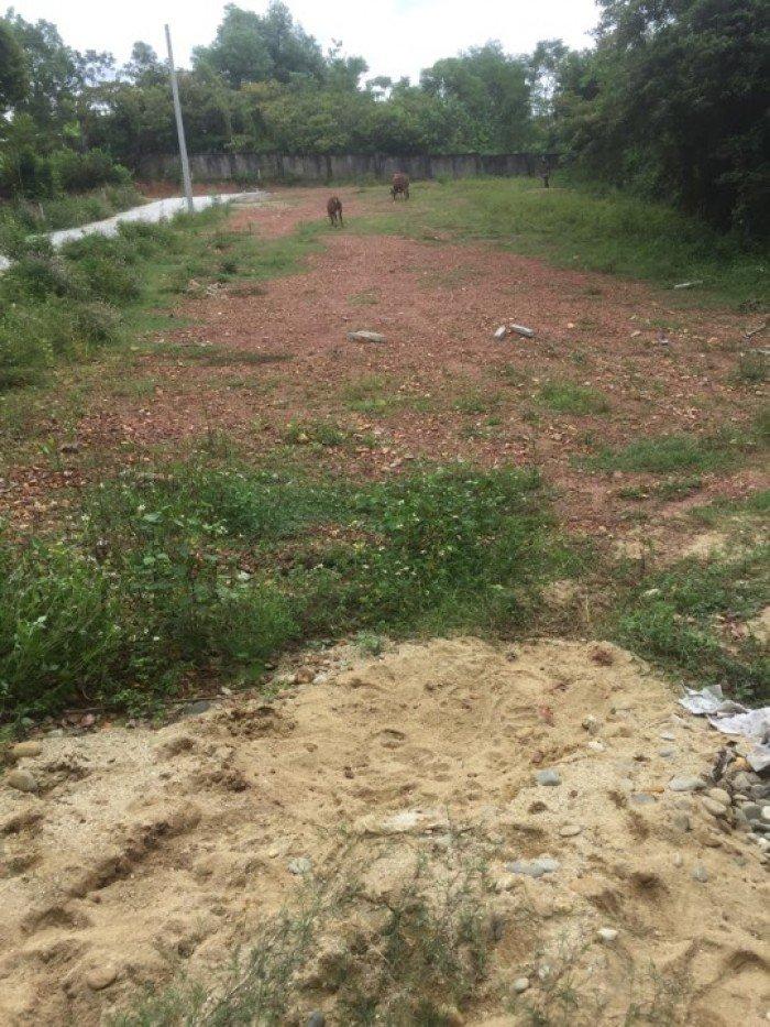 Bán Đất Đường Thanh Hải - Quảng Tế