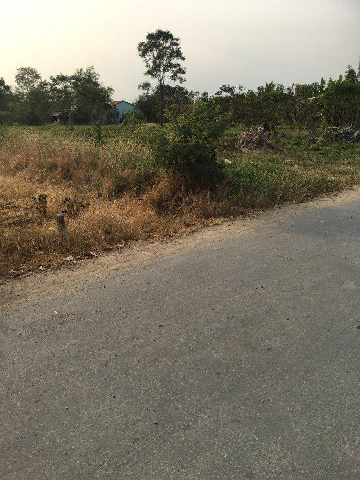 Đất thổ cư hai mặt tiền 582m2 đường Tân Liễu, xã Hưng Long, huyện Bình Chánh.