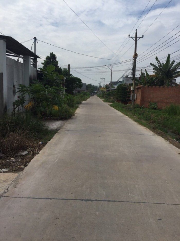 Bán đất nền giá rẻ khu vực phà Cát Lái, xã Phú Hữu, Đại Phước, Phú Đông