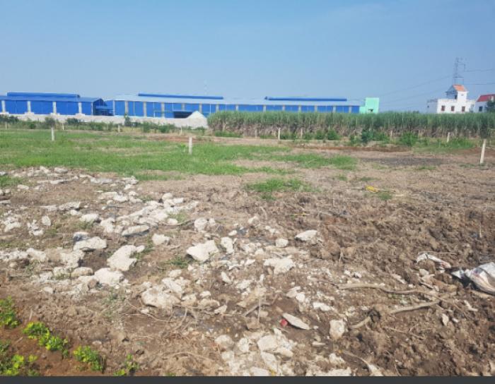 Đất vườn giá rẻ bất ngờ gần cầu ÔNG THÌN chỉ 1.9tr Sổ hồng riêng