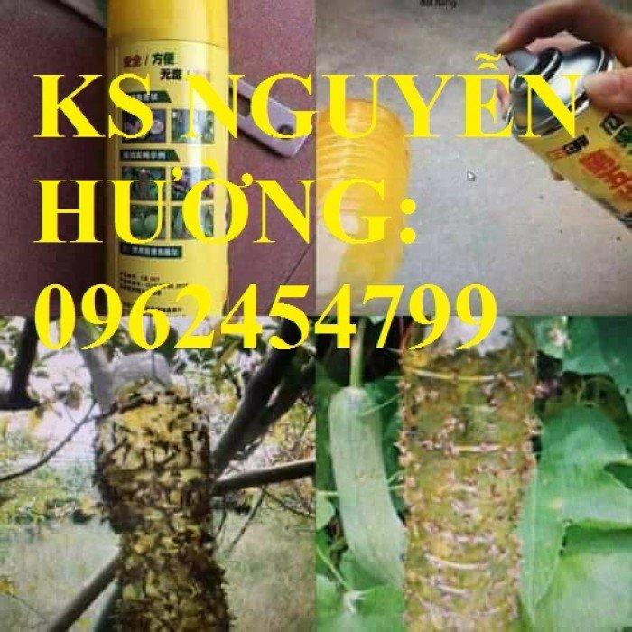 Cung cấp bình xịt ruồi vàng, thuốc diệt ruồi vàng, thuốc bảo vệ thực vật, giao hàng toàn quốc3