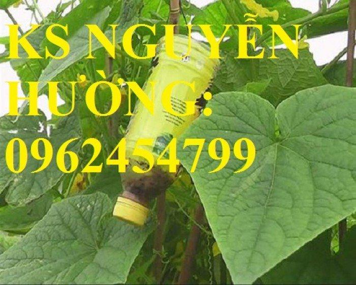 Cung cấp bình xịt ruồi vàng, thuốc diệt ruồi vàng, thuốc bảo vệ thực vật, giao hàng toàn quốc4