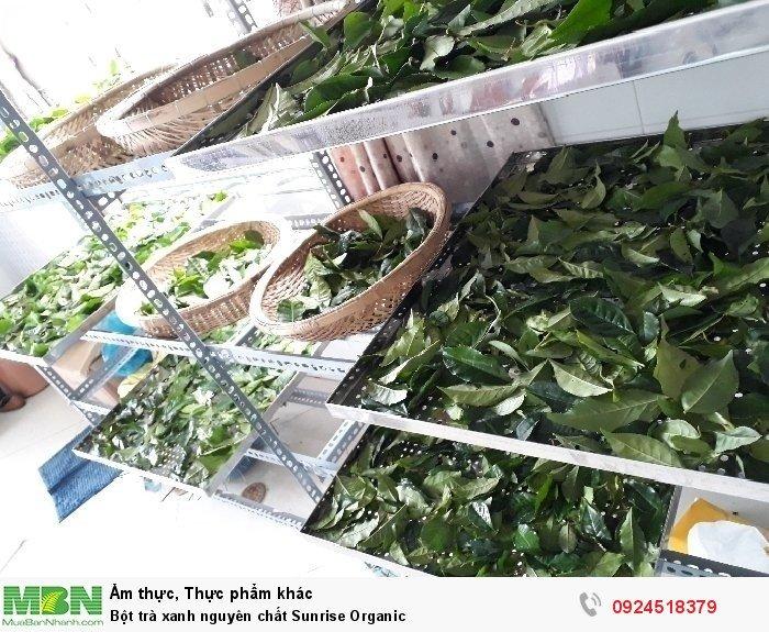 Bột trà xanh nguyên chất Sunrise Organic1