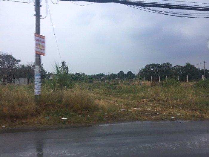 Đất vườn mặt tiền Tân Liễu Hương lộ 11, 1130m2 ngang 25m. SHR.