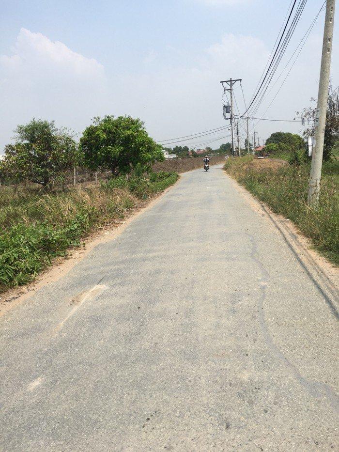 Bán đất thổ cư 445m2, đường oto xã Hưng Long, huyện Bình Chánh