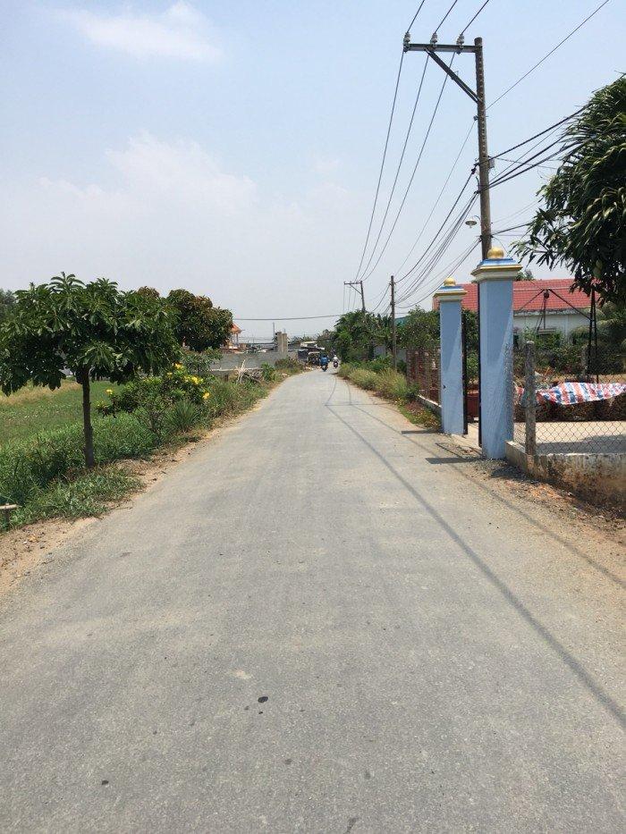 Đất mặt tiền đường Tân Liễu, xã Hưng Long, huyện Bình Chánh