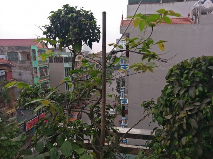 Bán nhà liền kề mặt phố Nguyễn Viết Xuân 48m2*5 tầng ô tô có thể để trong nhà.