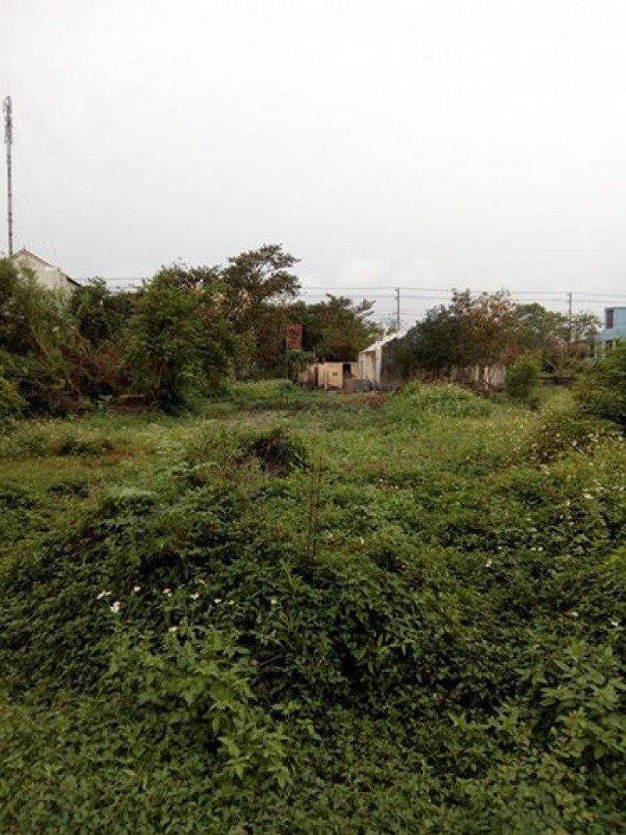 Bán đất gần trung tâm tp Đồng Hới