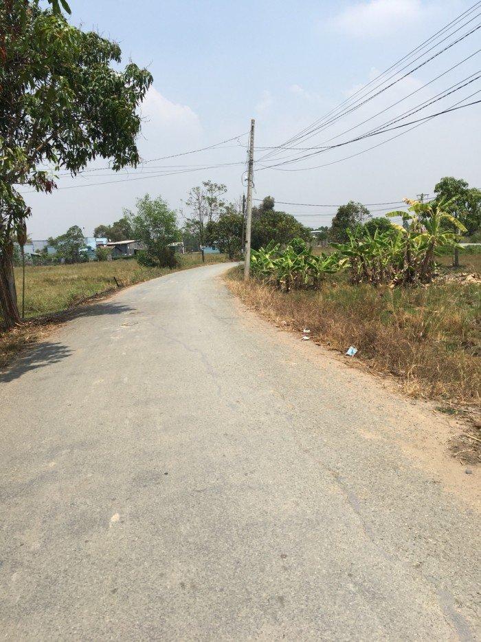 Cần bán lô đất mặt tiền đường Nguyễn Văn Thời, xã Quy Đức, huyện Bình Chánh