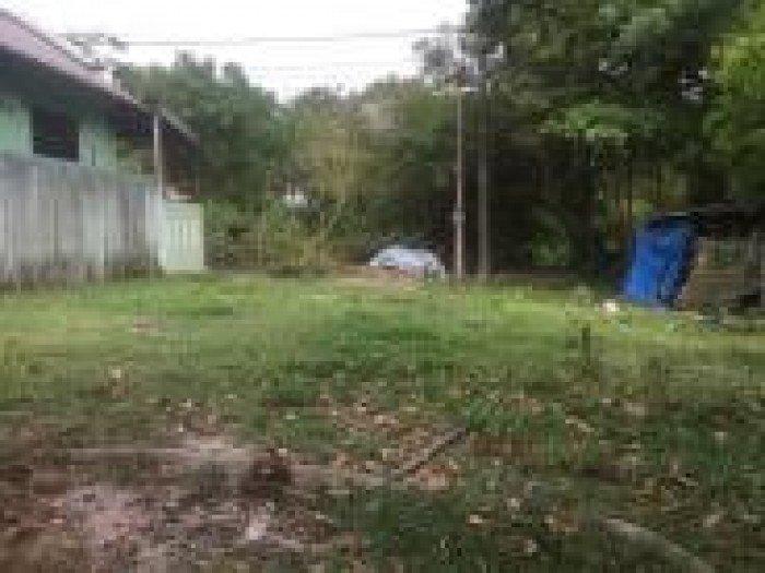 Đất mặt tiền đường Lê Công Hành, TP Huế giá cực rẻ.